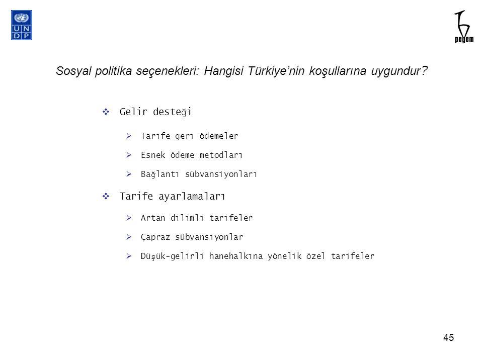 Sosyal politika seçenekleri: Hangisi Türkiye'nin koşullarına uygundur