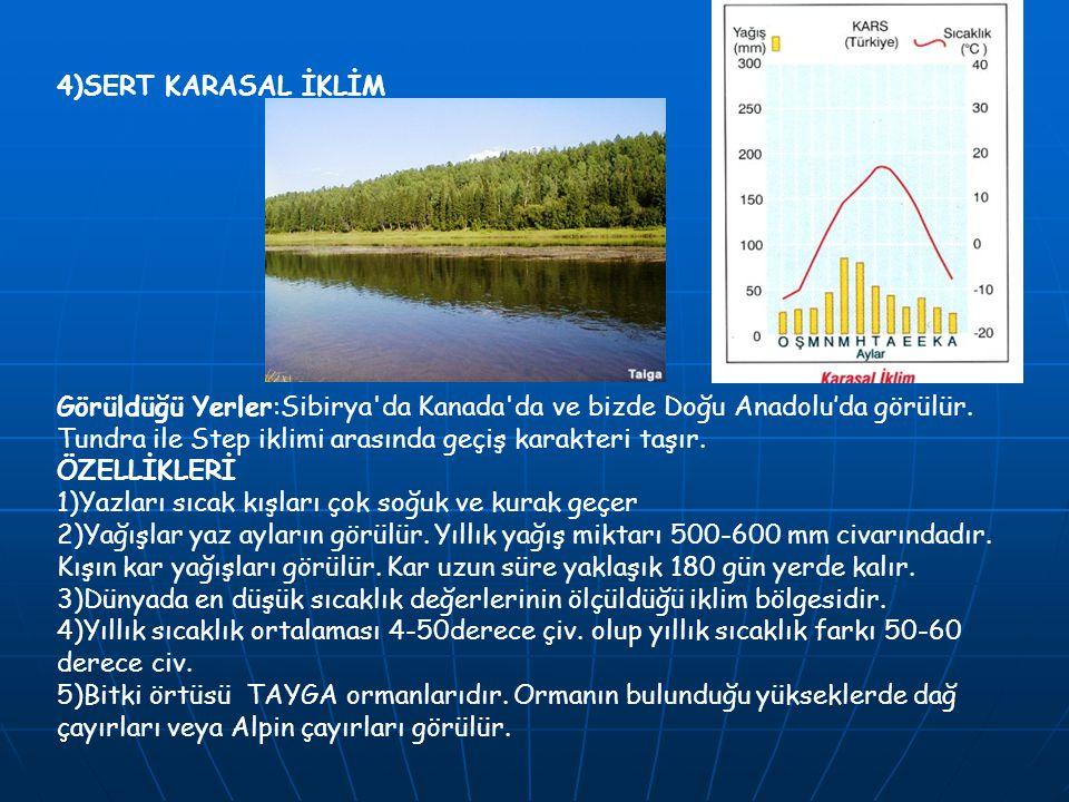 4)SERT KARASAL İKLİM Görüldüğü Yerler:Sibirya da Kanada da ve bizde Doğu Anadolu'da görülür. Tundra ile Step iklimi arasında geçiş karakteri taşır.