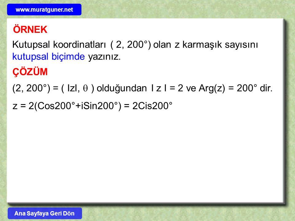 (2, 200°) = ( IzI,  ) olduğundan I z I = 2 ve Arg(z) = 200° dir.