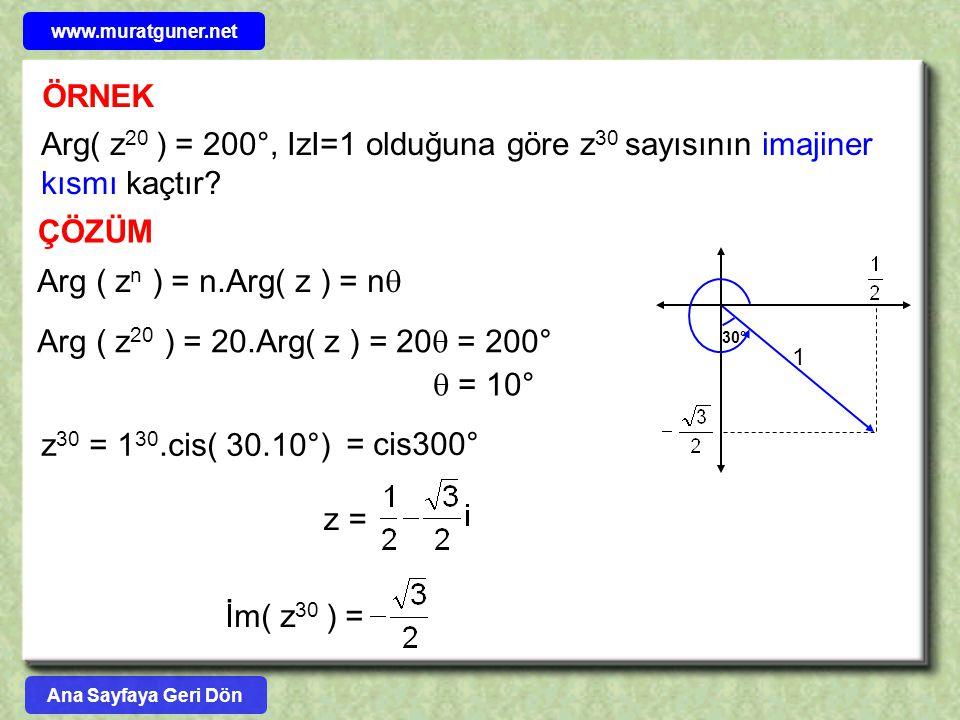 www.muratguner.net ÖRNEK. Arg( z20 ) = 200°, IzI=1 olduğuna göre z30 sayısının imajiner kısmı kaçtır