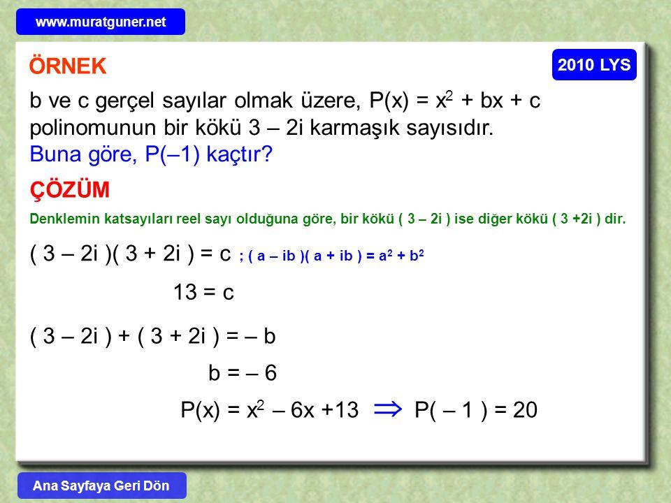 www.muratguner.net ÖRNEK. 2010 LYS.