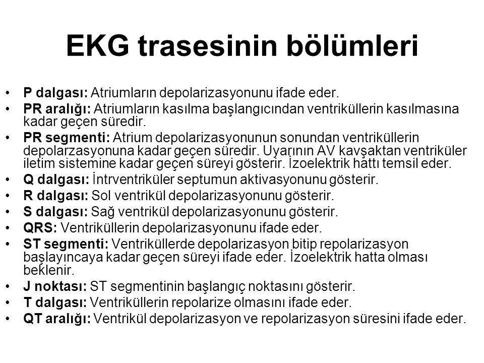 EKG trasesinin bölümleri