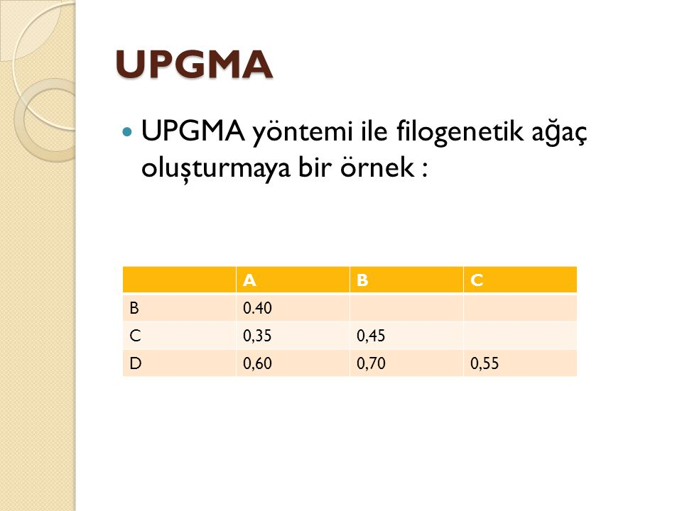 UPGMA UPGMA yöntemi ile filogenetik ağaç oluşturmaya bir örnek : A B C