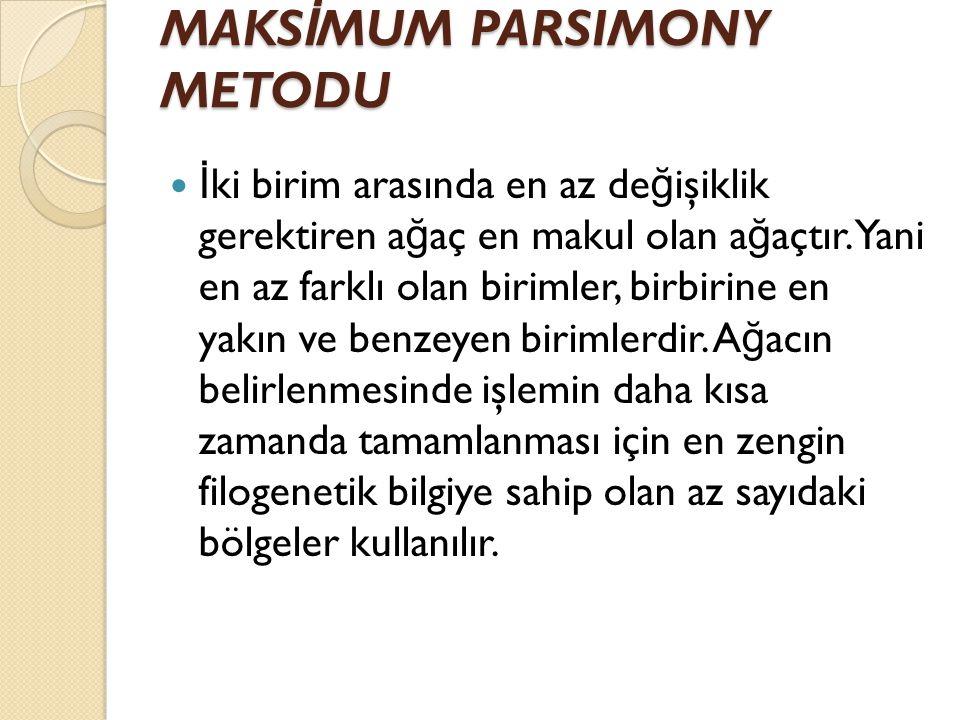 MAKSİMUM PARSIMONY METODU