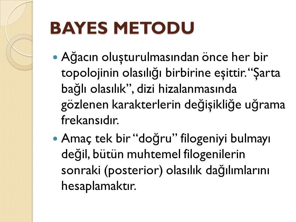 BAYES METODU