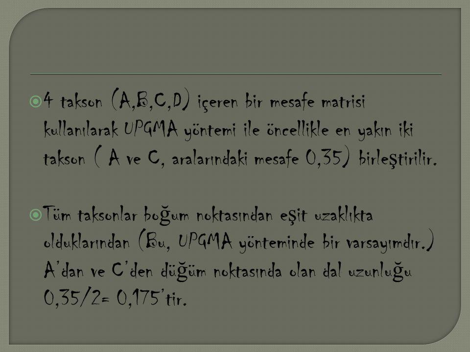 4 takson (A,B,C,D) içeren bir mesafe matrisi kullanılarak UPGMA yöntemi ile öncellikle en yakın iki takson ( A ve C, aralarındaki mesafe 0,35) birleştirilir.