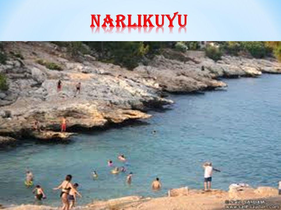 narlIkuyu