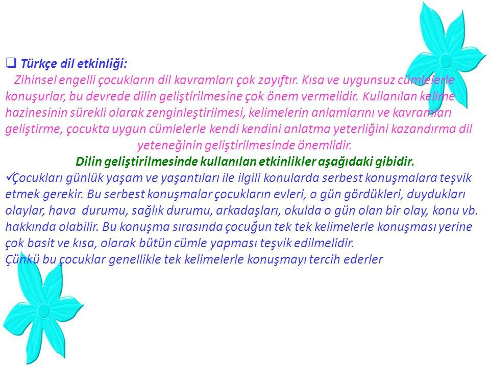 Türkçe dil etkinliği: Zihinsel engelli çocukların dil kavramları çok zayıftır. Kısa ve uygunsuz cümlelerle.