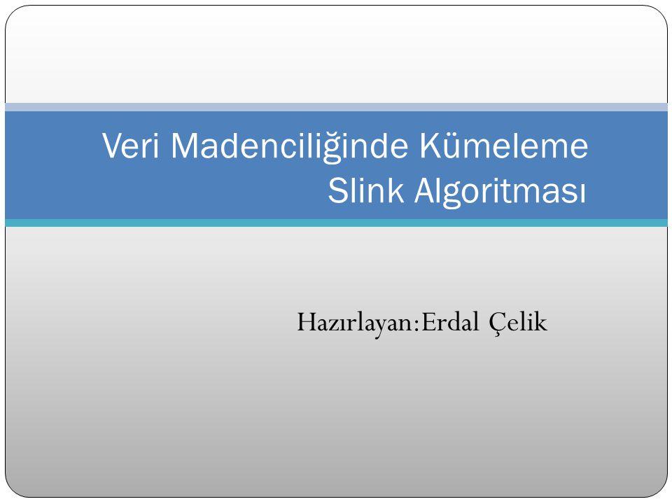 Veri Madenciliğinde Kümeleme Slink Algoritması