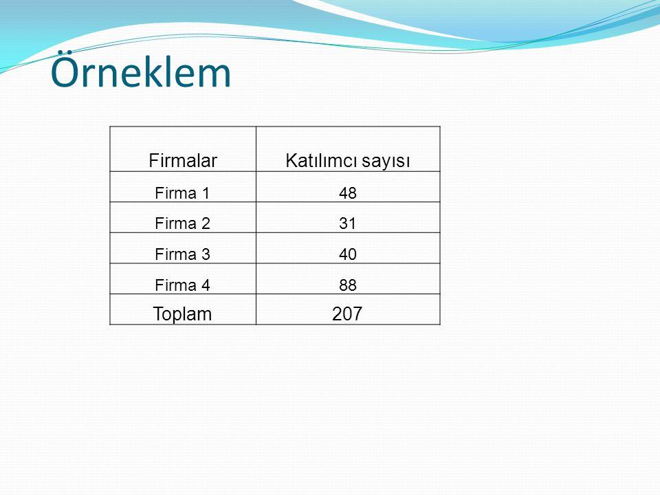 Örneklem Firmalar Katılımcı sayısı Toplam 207 Firma 1 48 Firma 2 31