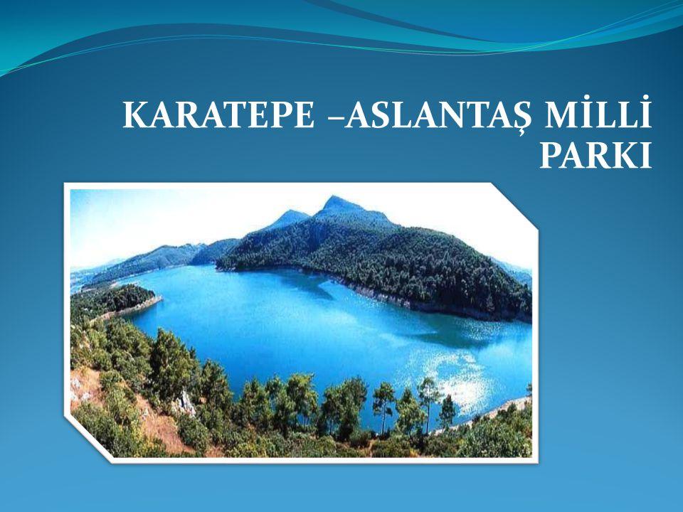 KARATEPE –ASLANTAŞ MİLLİ PARKI