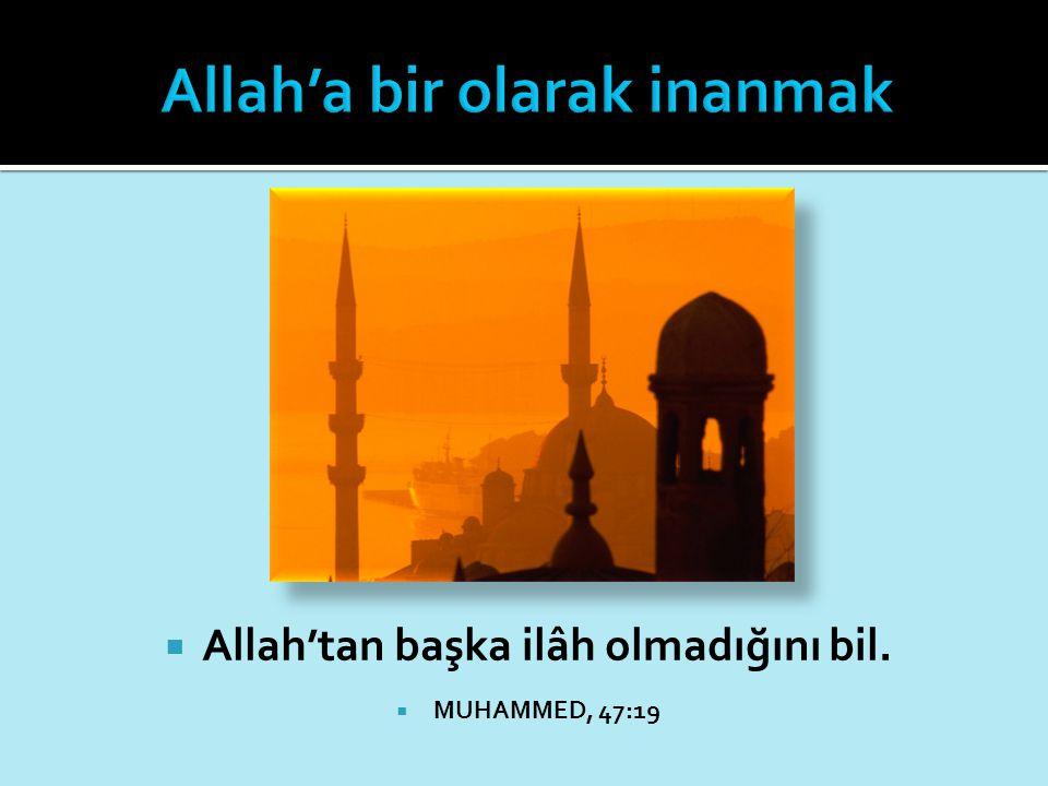 Allah'a bir olarak inanmak