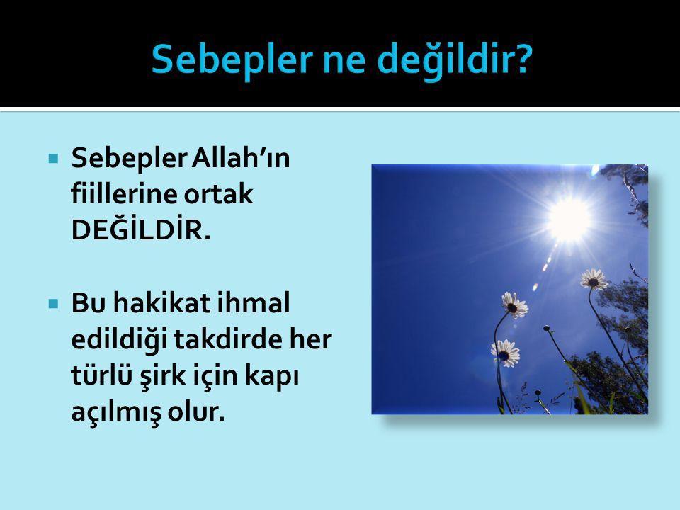 Sebepler ne değildir Sebepler Allah'ın fiillerine ortak DEĞİLDİR.
