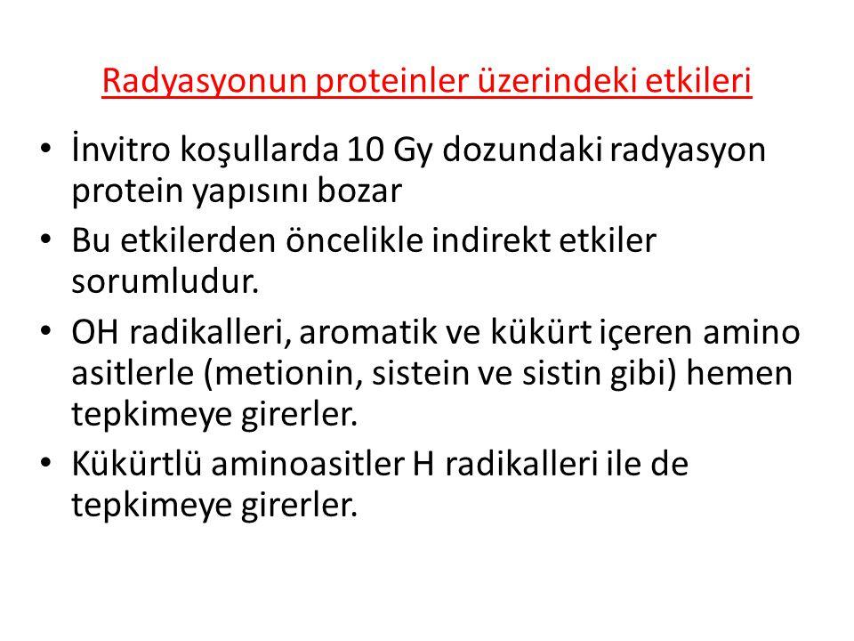 Radyasyonun proteinler üzerindeki etkileri