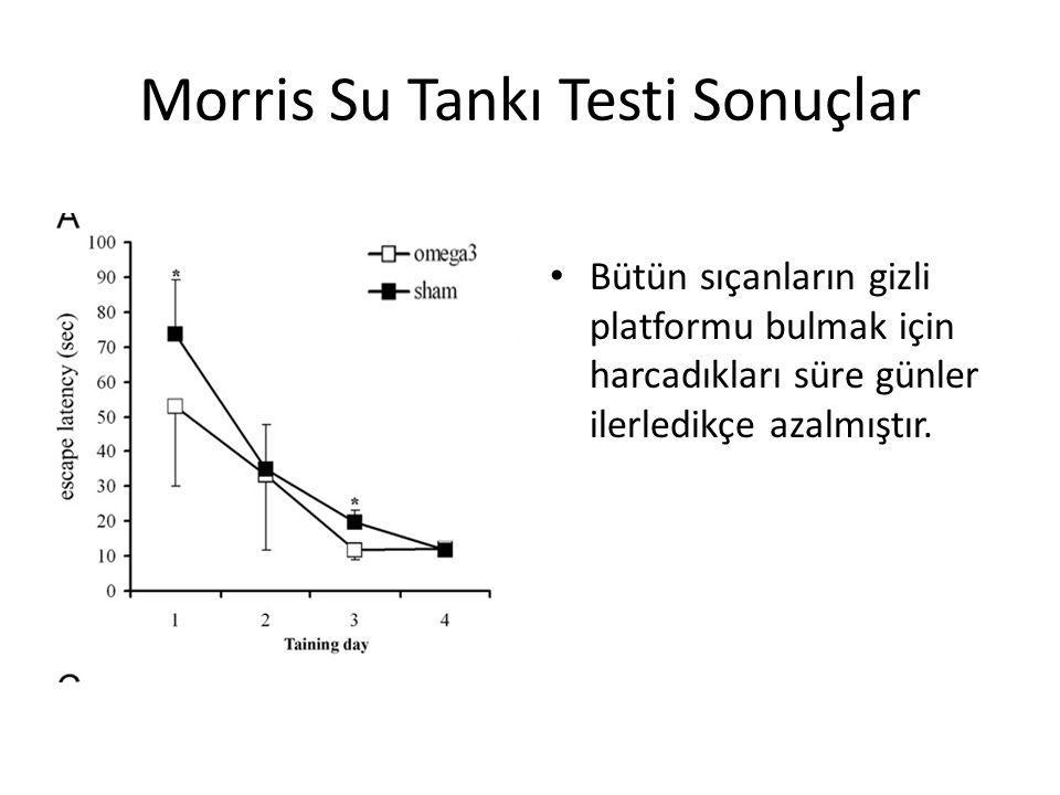 Morris Su Tankı Testi Sonuçlar