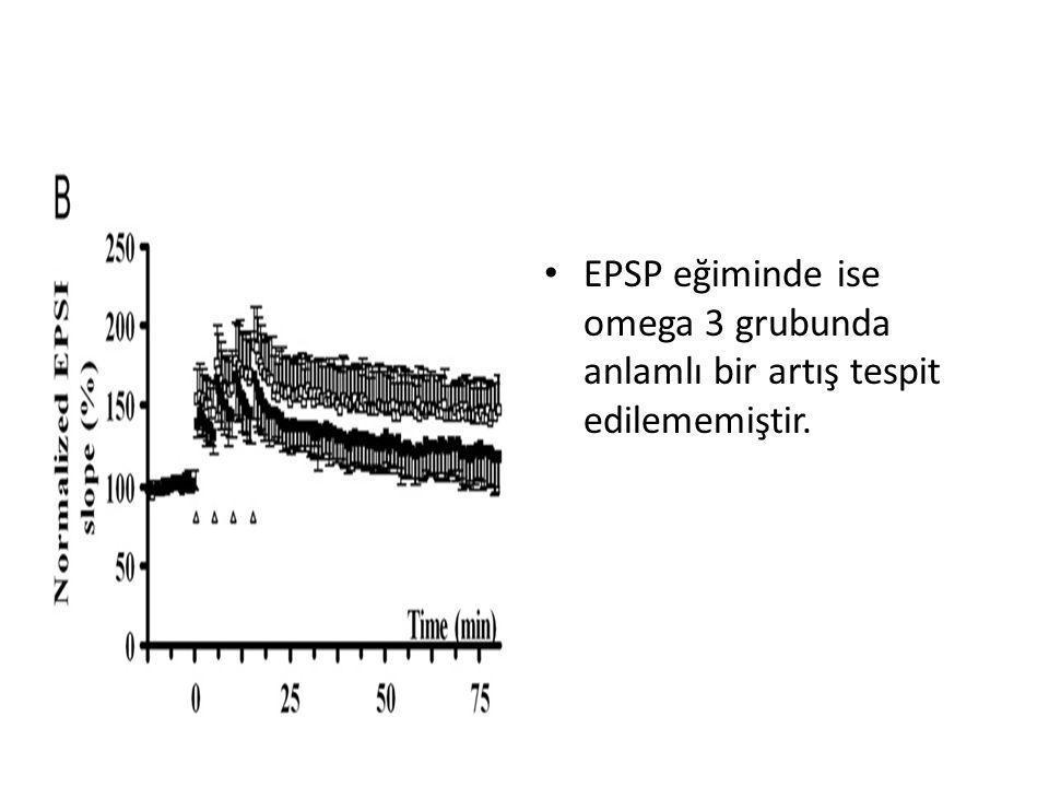 EPSP eğiminde ise omega 3 grubunda anlamlı bir artış tespit edilememiştir.