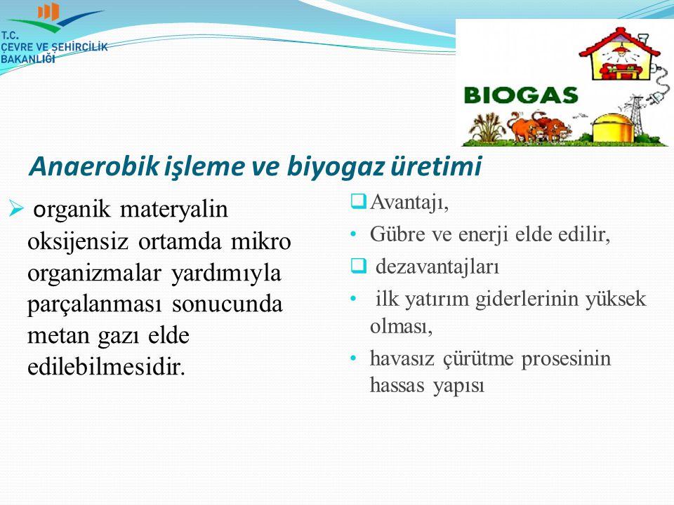 Anaerobik işleme ve biyogaz üretimi