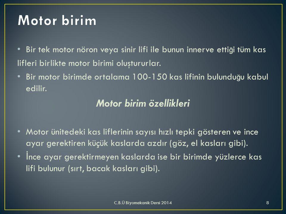 Motor birim özellikleri