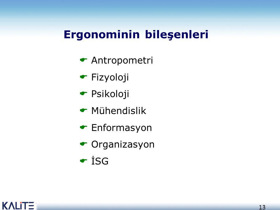 Ergonominin bileşenleri