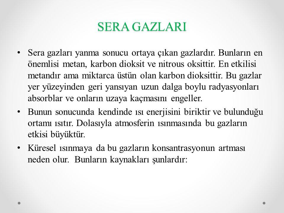 SERA GAZLARI