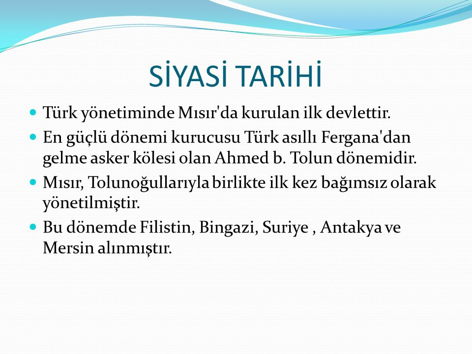 SİYASİ TARİHİ Türk yönetiminde Mısır da kurulan ilk devlettir.