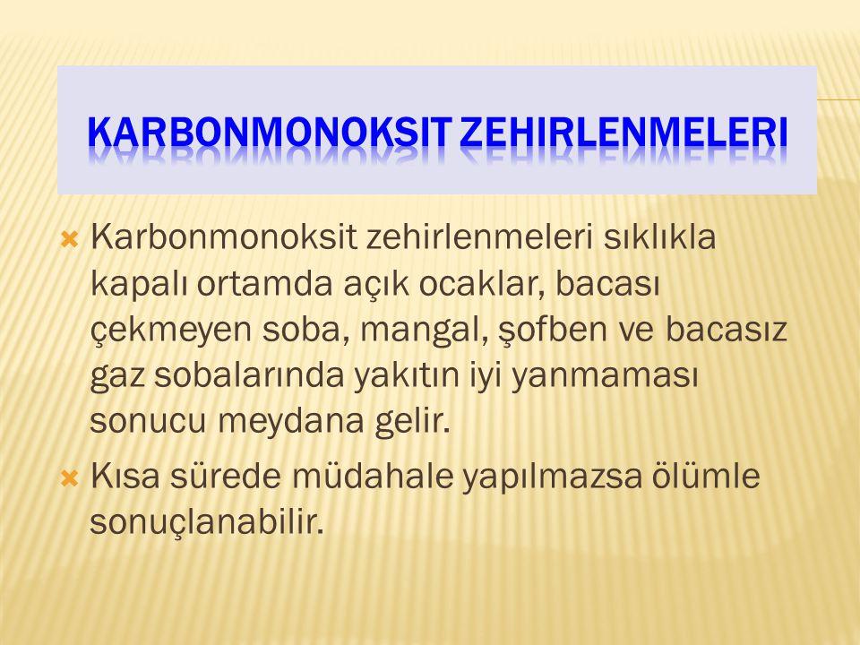 Karbonmonoksit zehirlenmeleri