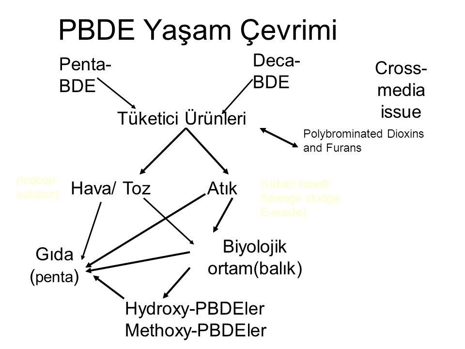 Biyolojik ortam(balık)