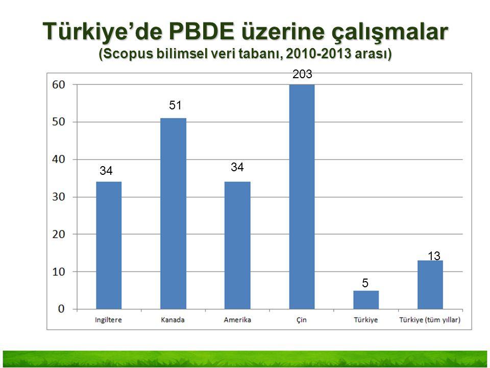Türkiye'de PBDE üzerine çalışmalar (Scopus bilimsel veri tabanı, 2010-2013 arası)