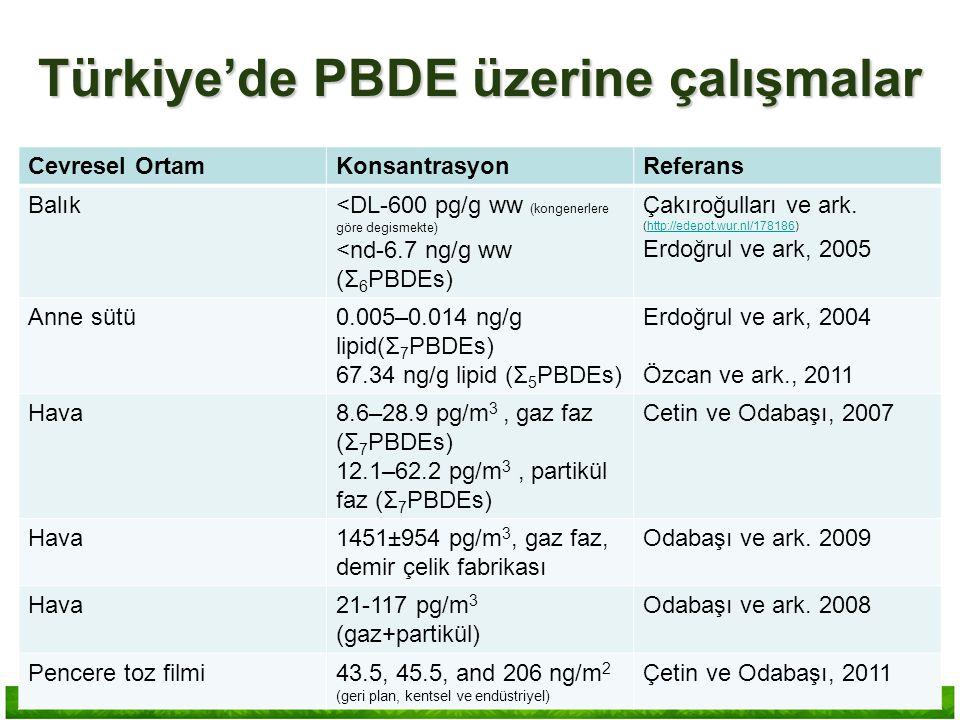Türkiye'de PBDE üzerine çalışmalar