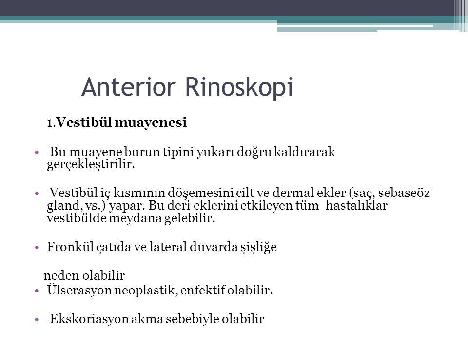 Anterior Rinoskopi 1.Vestibül muayenesi