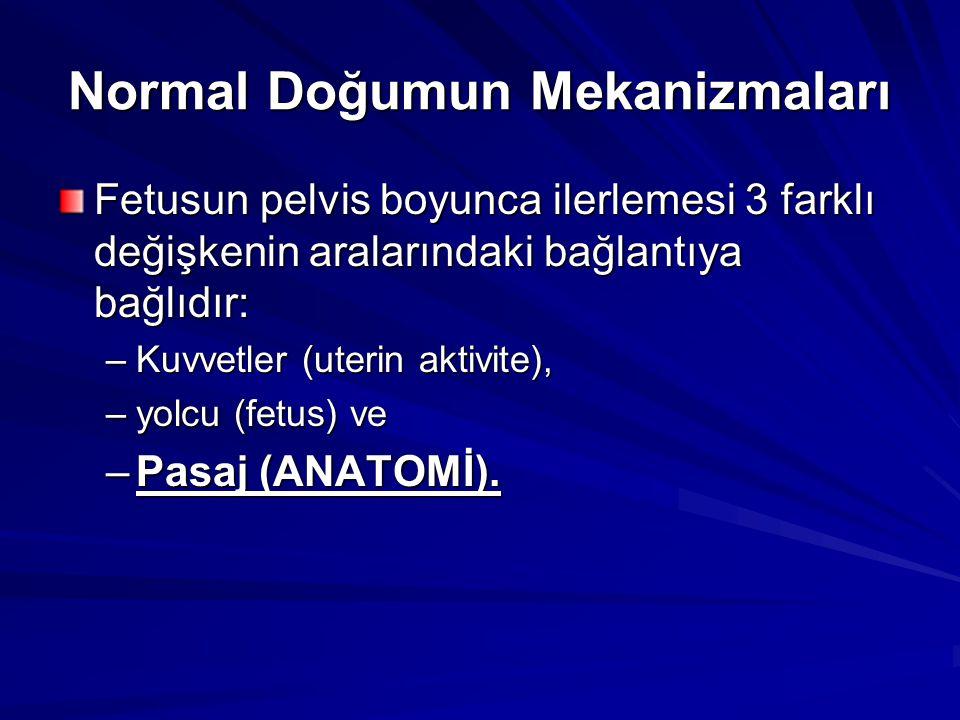 Normal Doğumun Mekanizmaları
