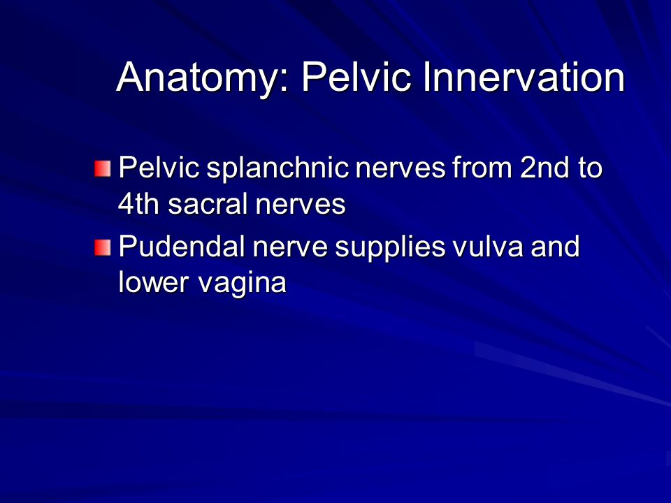 Anatomy: Pelvic Innervation