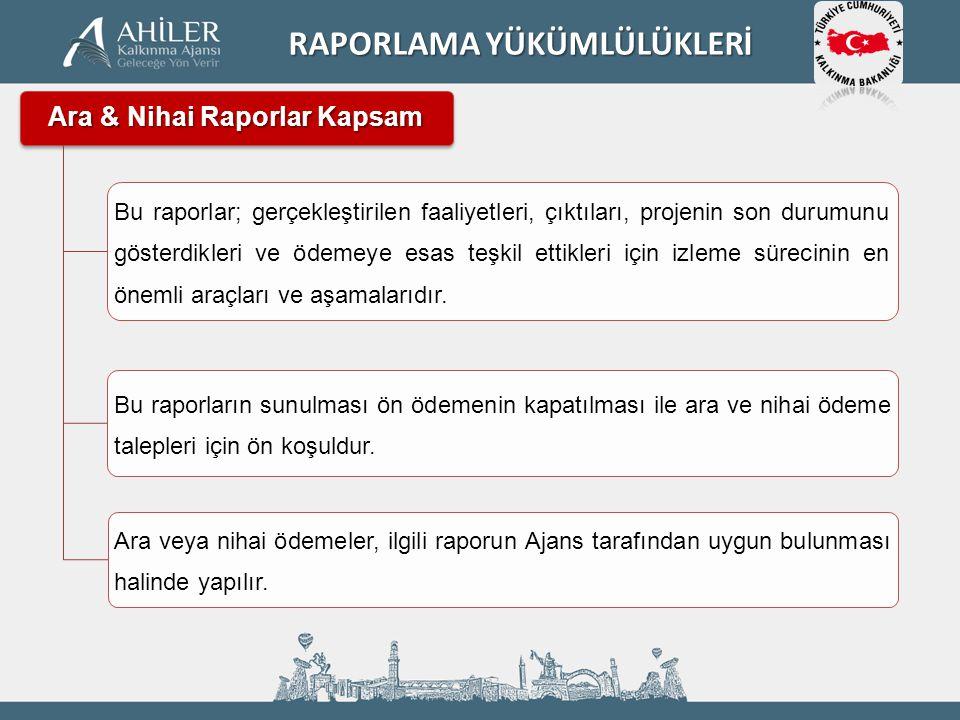 Ara & Nihai Raporlar Kapsam