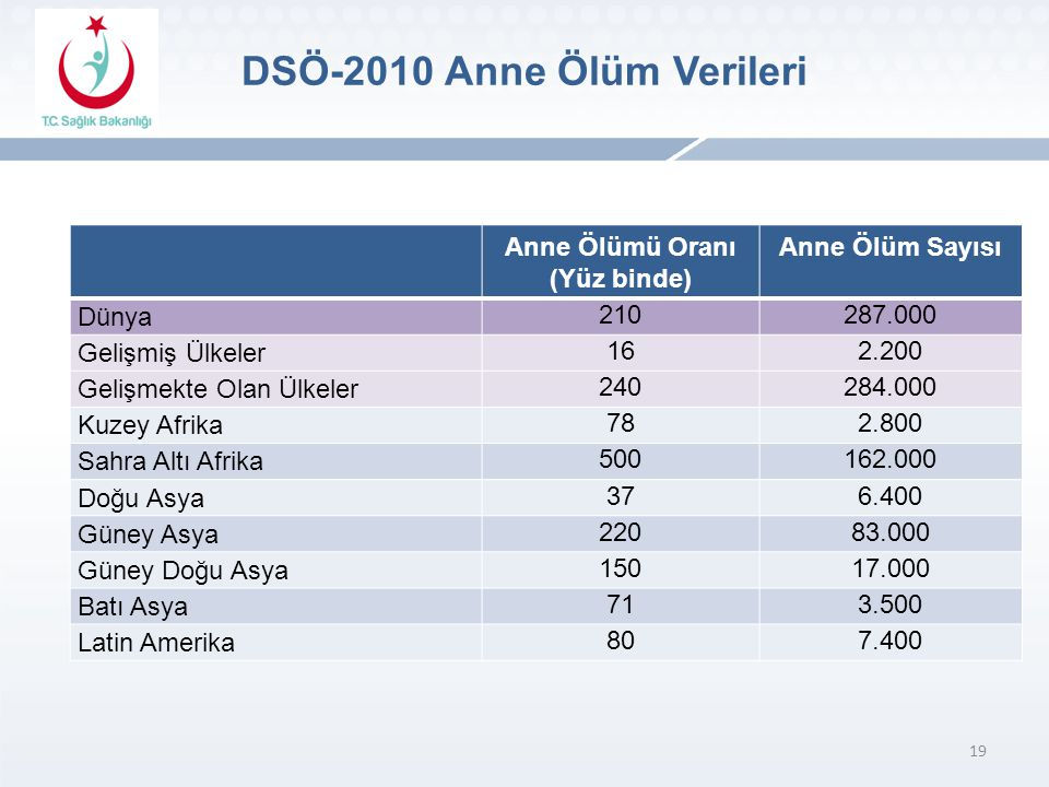 DSÖ-2010 Anne Ölüm Verileri