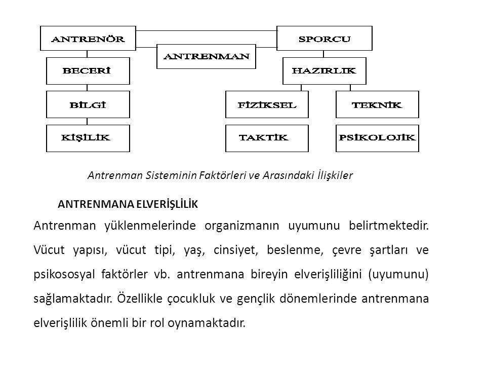 Antrenman Sisteminin Faktörleri ve Arasındaki İlişkiler