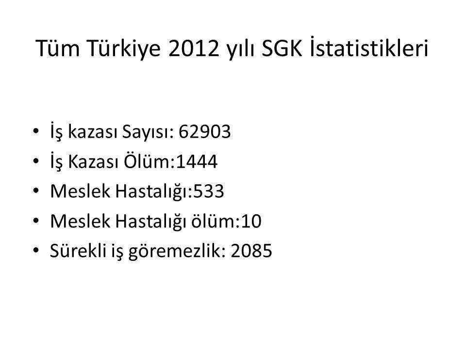 Tüm Türkiye 2012 yılı SGK İstatistikleri