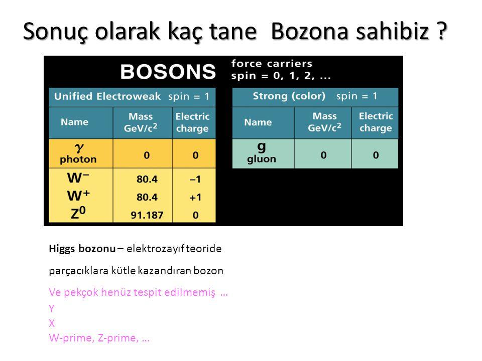 Sonuç olarak kaç tane Bozona sahibiz
