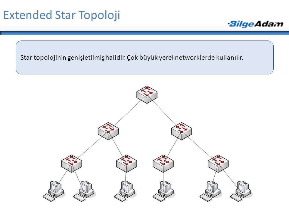 Extended Star Topoloji