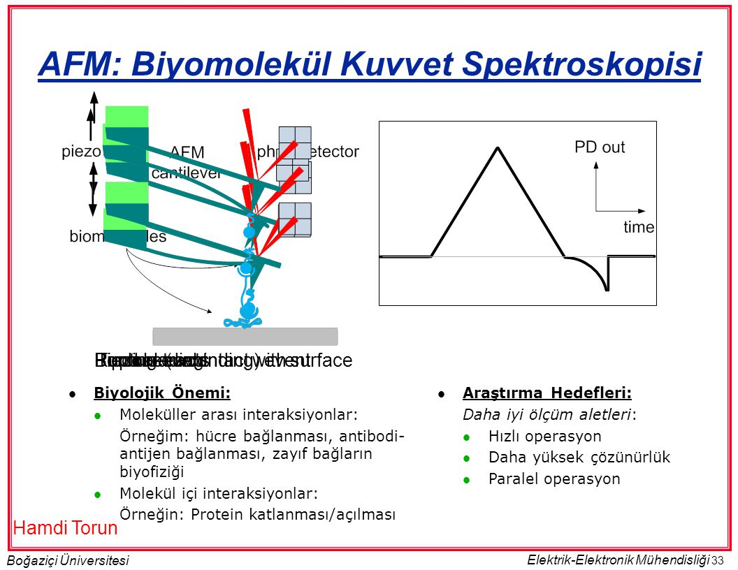 AFM: Biyomolekül Kuvvet Spektroskopisi
