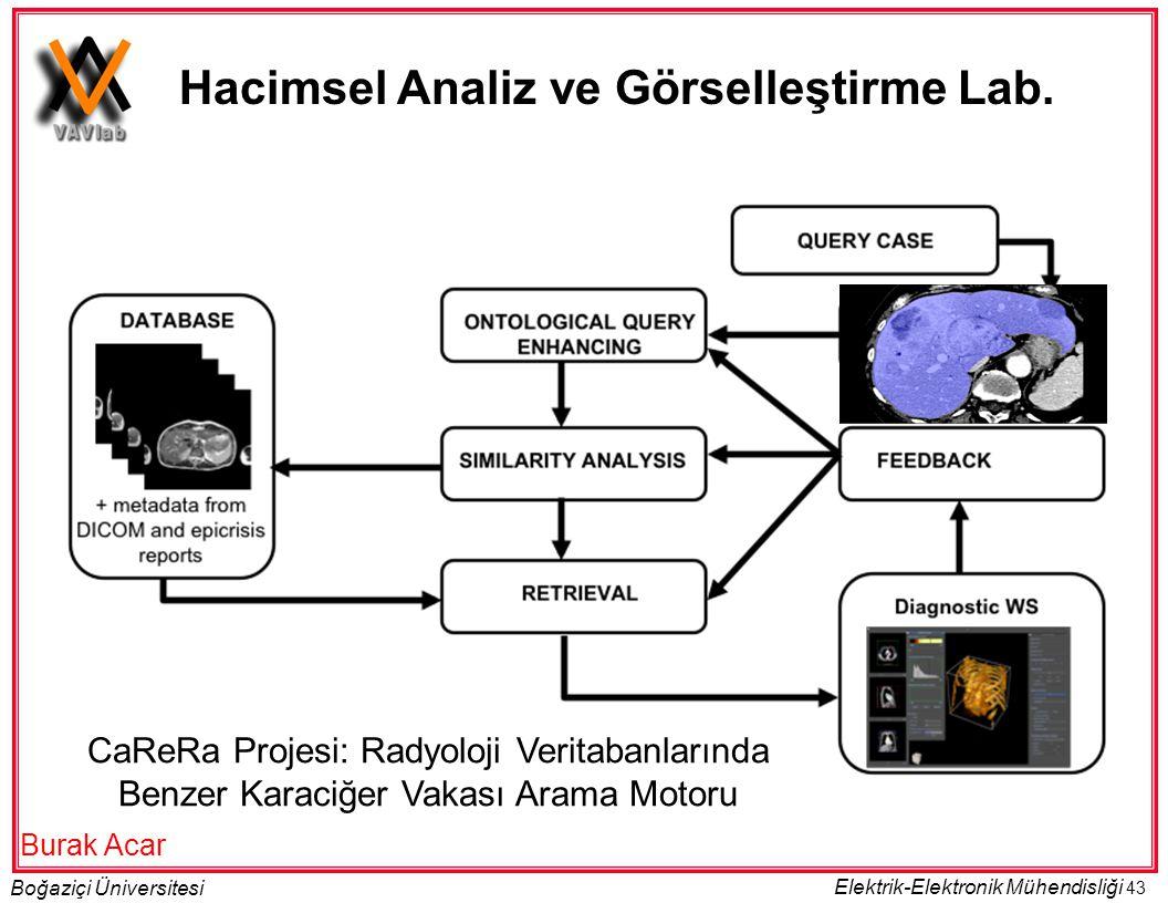 Hacimsel Analiz ve Görselleştirme Lab.