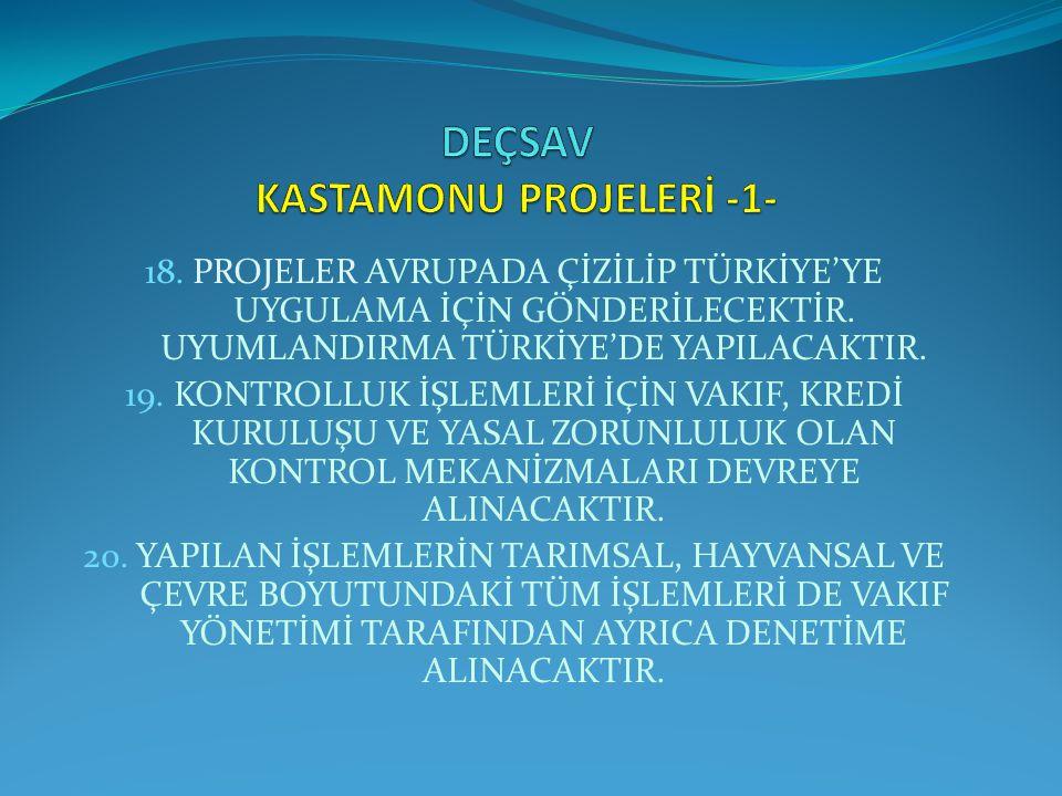 DEÇSAV KASTAMONU PROJELERİ -1-