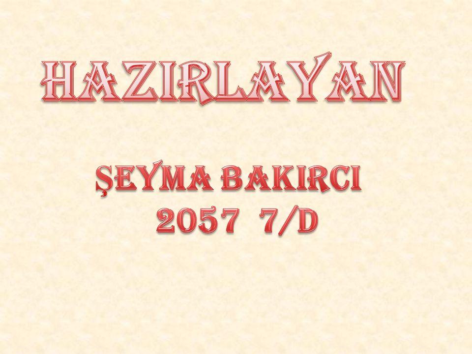 HaZIRLAYAN ŞEYMA BAKIRCI 2057 7/D