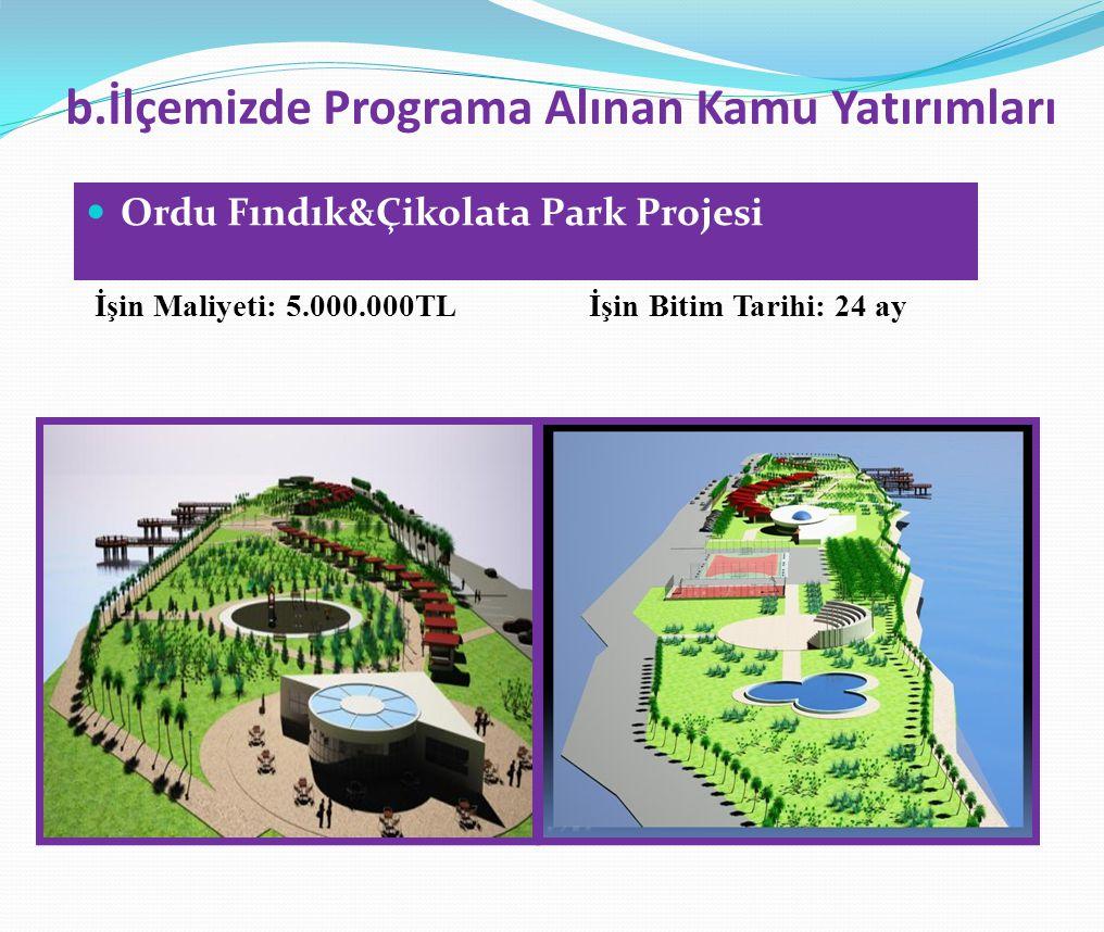 b.İlçemizde Programa Alınan Kamu Yatırımları