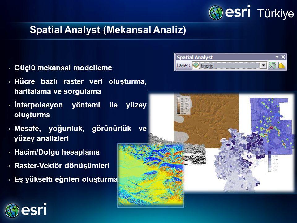 Spatial Analyst (Mekansal Analiz)