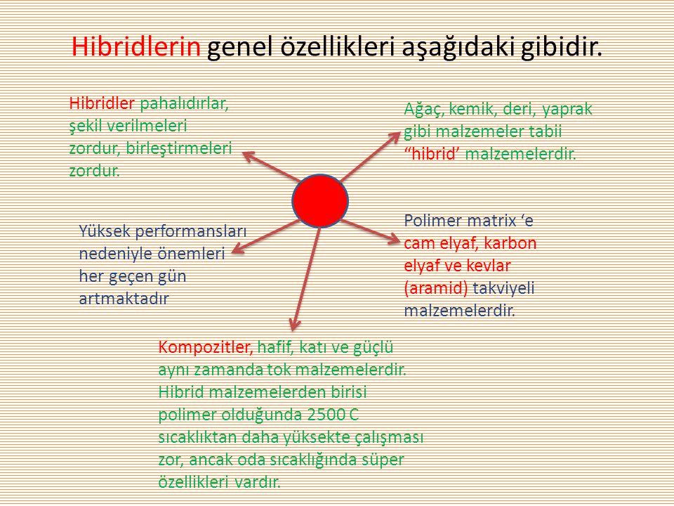 Hibridlerin genel özellikleri aşağıdaki gibidir.