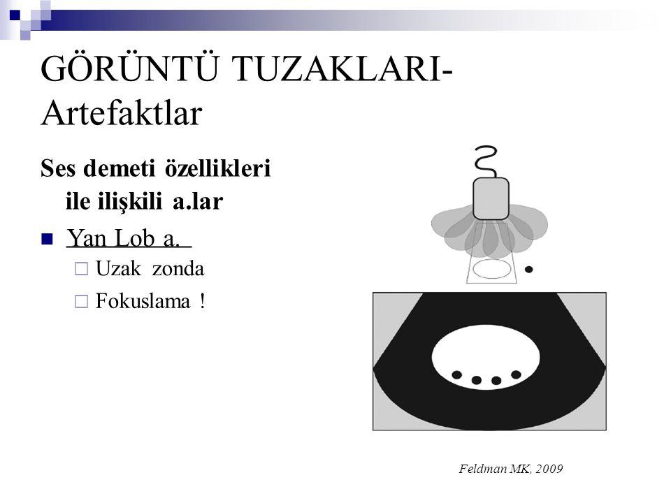 GÖRÜNTÜ TUZAKLARI- Artefaktlar Ses demeti özellikleri zonda