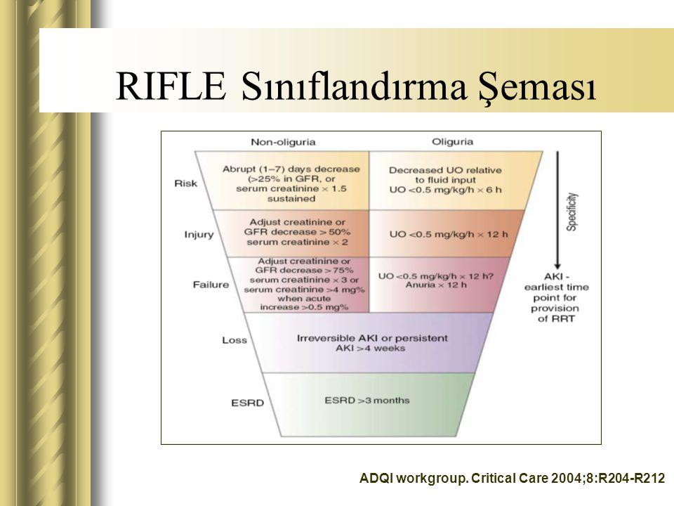 RIFLE Sınıflandırma Şeması
