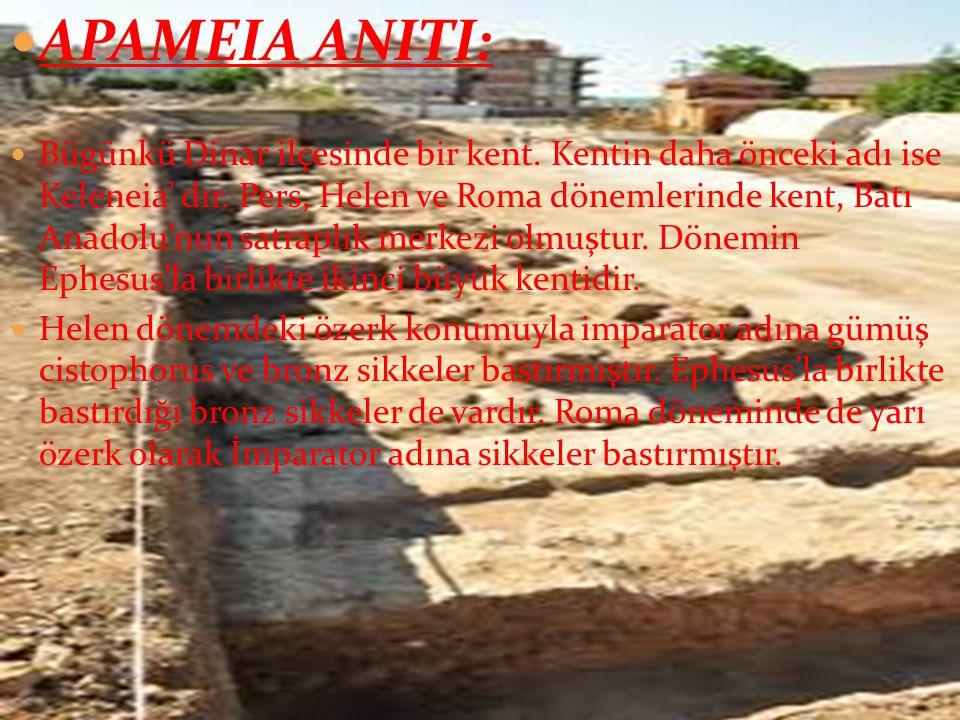 APAMEIA ANITI: