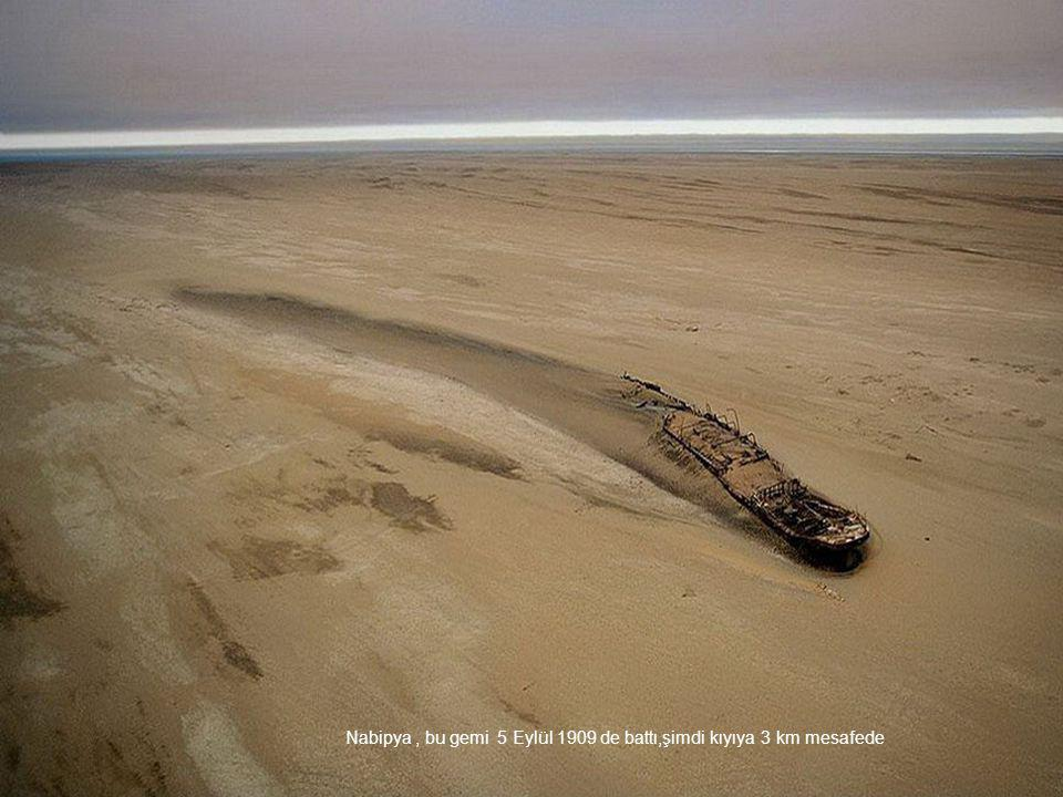Nabipya , bu gemi 5 Eylül 1909 de battı,şimdi kıyıya 3 km mesafede