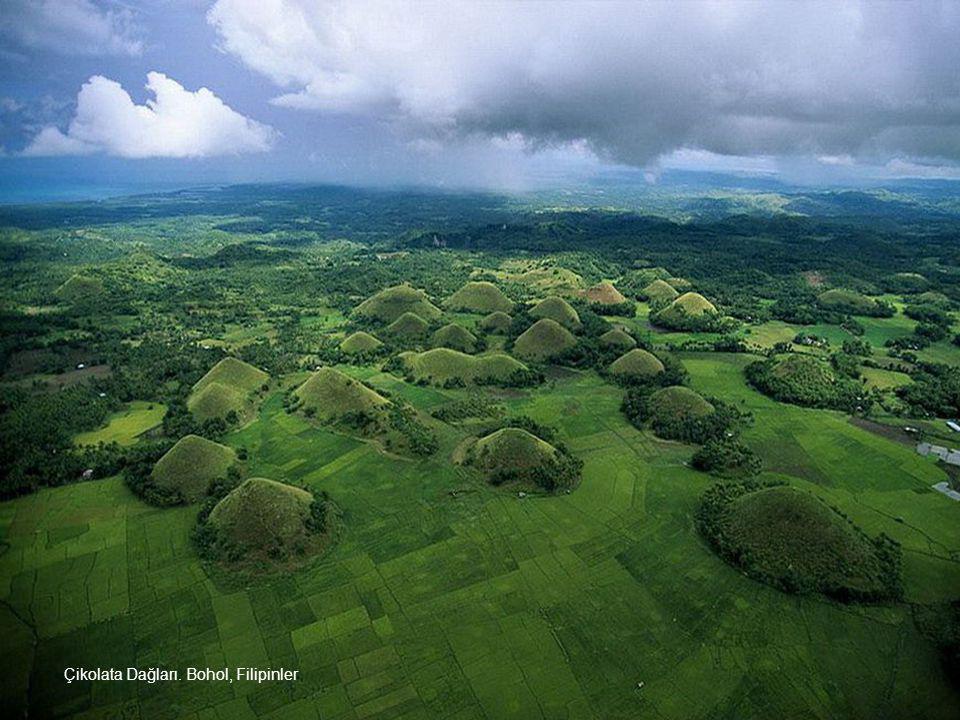 Çikolata Dağları. Bohol, Filipinler adası